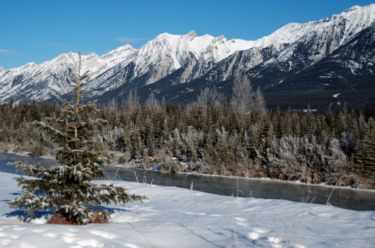The Bow River surrounded by the snow-covered Rockies